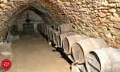 wine cellar, kegs, logo'd